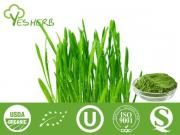Wheat Grass Juice polvere
