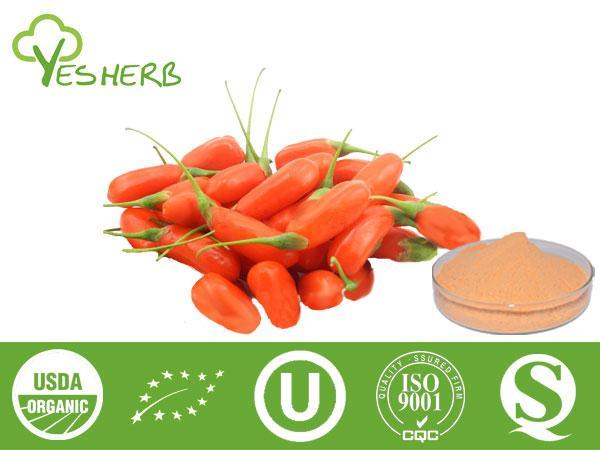 Goji Berry Powder Manufacturer Juice Powder Xian Yuensun