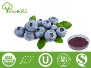 Blueberry Powder